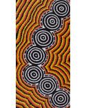 Coral Napangardi Gallagher art peinture aborigene australie